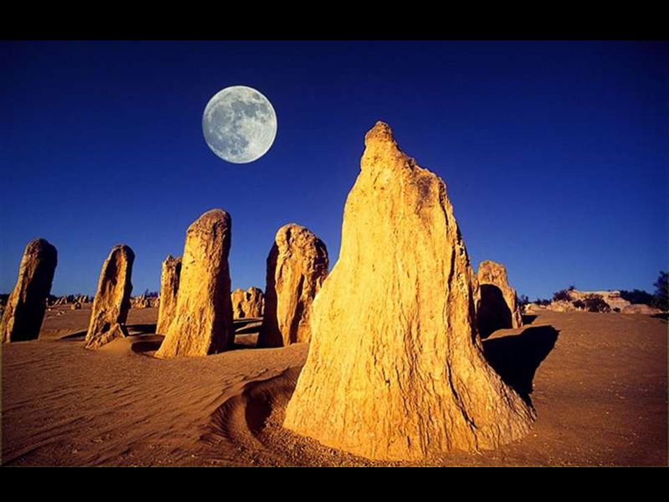 escursione Intera Giornata Deserto dei Pinnacoli