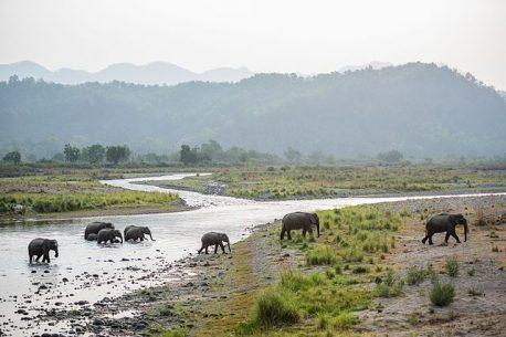 Viaggio di pesca in India