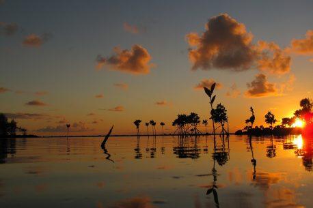 Light trekking alle Mauritius
